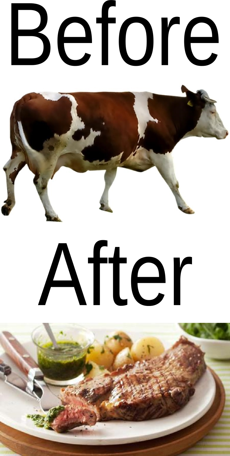Before and after picture of cow turned rare rump.